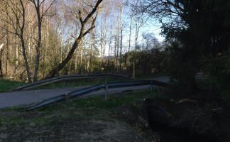 Brücke über das Krummbächlein
